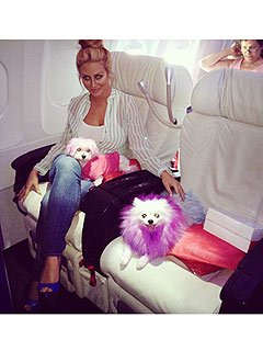 Aubrey O'Day – and Her Dogs! – Fly First Class