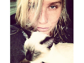 Ke$ha Brings Home a Cat After Strip Club Visit