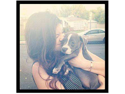 Kylie Jenner Cuddles Puppy: Photo
