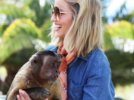 Dianna Agron's Summer Job: Helping Hungry Animals | Stars and Pets, Zoo Animals, Dianna Agron