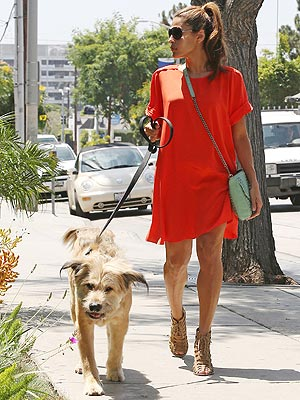 Eva Mendes Has Date with Ryan Gosling&#39;s Dog