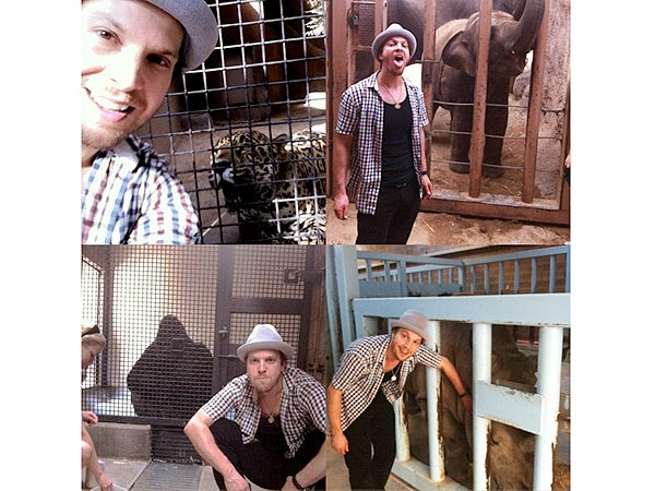 Gavin DeGraw Loofahs a Rhino| Stars and Pets, Zoo Animals, Gavin DeGraw