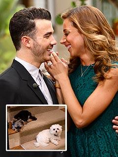Kevin & Danielle Jonas: Dogs Prep Us for Babies   Kevin Jonas