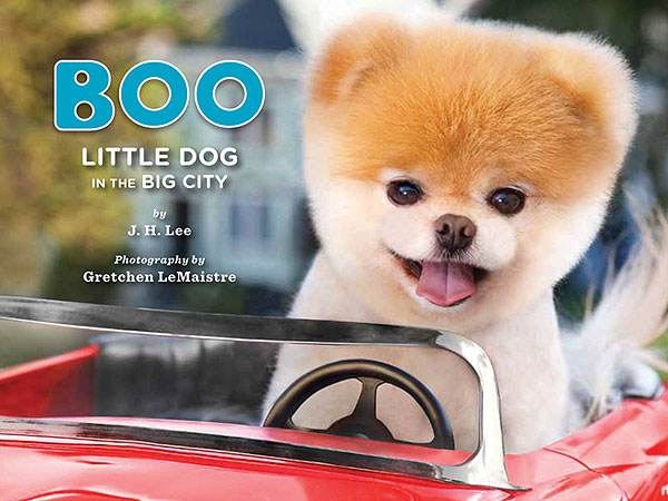 Giveaway! Win Prize Packs from Boo, the World's Cutest Dog