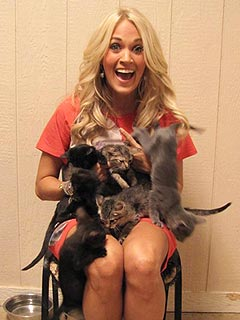 PHOTOS: Carrie Underwood Spends a Day Off Cuddling Kittens | Carrie Underwood