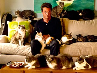 Is Matthew Perry a Crazy Cat Guy? | Matthew Perry