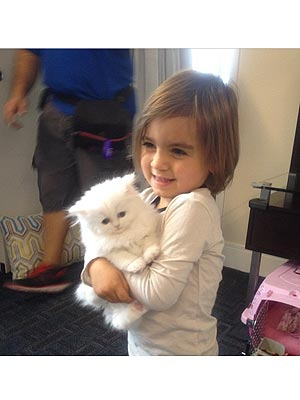 Kim Kardashian – and Mason! – Fall in Love with Kitten Mercy| Stars and Pets, Cats, Kim Kardashian