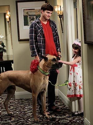 Ashton Kutcher Adopts Dog on Two and a Half Men