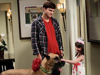 Ashton Kutcher Adopts a (Huge) Dog – on TV!   Ashton Kutcher