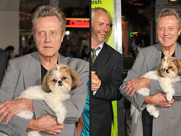 Bonny the Shih Tzu Has a Field Day at Seven Psychopaths Premiere| Dogs, Seven Psychopaths, Christopher Walken, Ozzy Osbourne, Sharon Osbourne