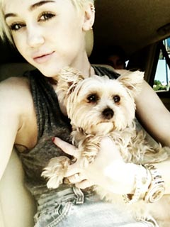 Miley Cyrus Heartbroken After Dog Lila Passes Away | Miley Cyrus