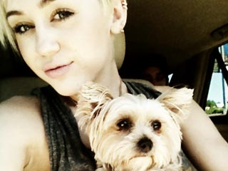 Miley Cyrus's 'Wrecking Ball' Tears Were Caused by Dog's Death | Miley Cyrus
