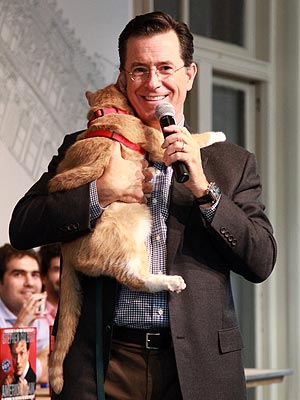 Stephen Colbert Hugs a Cat at Book Signing | Stephen Colbert
