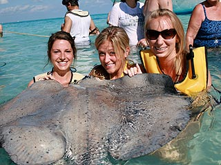 Stingray Photobomb: See the Before and After