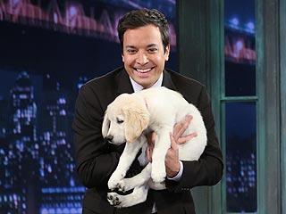 It's Jimmy Fallon's Time, Says PEOPLE's TV Critic | Jimmy Fallon