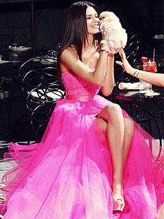 Kendall Jenner Poses with a Puppy (While Wearing a Formal Gown!)