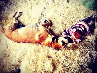 Cuddle Alert! Katherine Heigl&#39;s Daughter Gives Dog a Belly Rub