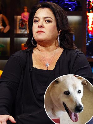 Rosie O'Donnell Dog Dies