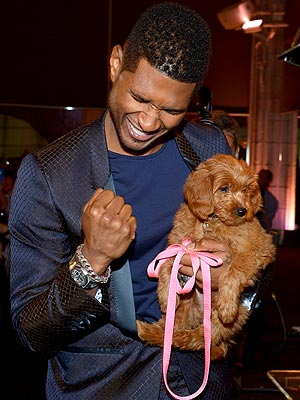 Usher Pays $12,000 for Goldendoodle at Auction