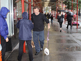 Alec Baldwin Faces Hurricane Sandy to Walk His Dogs | Alec Baldwin