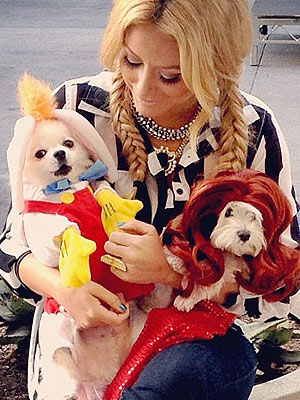 PHOTOS: Stars Dress Their Dogs for Halloween