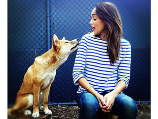Revenge's Ashley Madekwe Gets Dingo Kisses in Australia