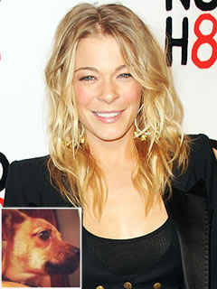 LeAnn Rimes Rescues &#39;Drop & Drive&#39; Puppy | LeAnn Rimes