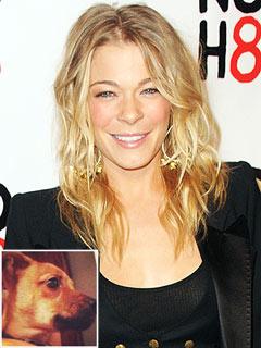 LeAnn Rimes Rescues 'Drop & Drive' Puppy | LeAnn Rimes