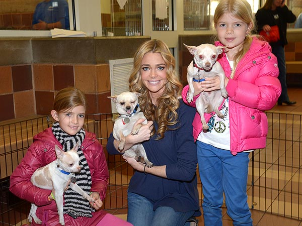 Denise Richards: Homeless Pets Need Even More Help After Sandy| Animal Charities, Stars and Pets, Denise Richards