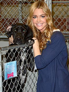 Denise Richards: Homeless Pets Need Even More Help After Sandy