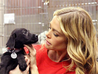 Denise Richards Adopts Puppy During Sandy Aftermath | Denise Richards
