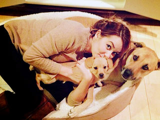 Burn! Lauren Conrad Dogshames Her Puppy