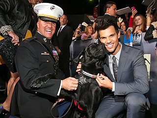 Cute! Taylor Lautner Meets a Military Dog on the Red Carpet | Taylor Lautner