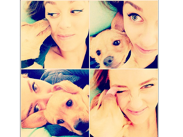 Lauren Conrad's Dog Pre-Games for Thanksgiving Laziness| Stars and Pets, Dogs, Lauren Conrad