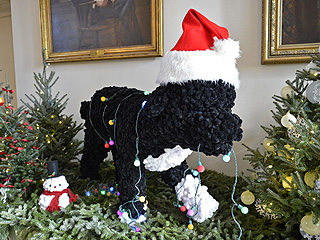 Check Out the 'Bo-flakes'! The First Dog Decks the White House Halls | Bo Obama