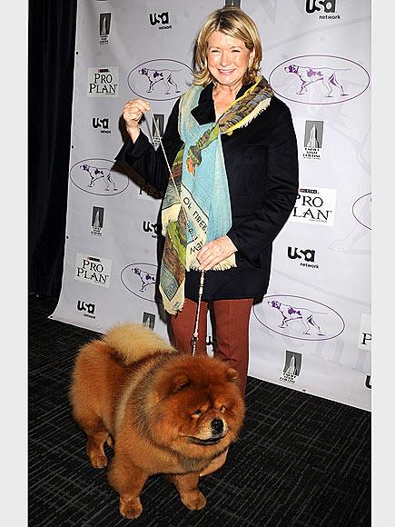 MARTHA STEWART photo | Martha Stewart
