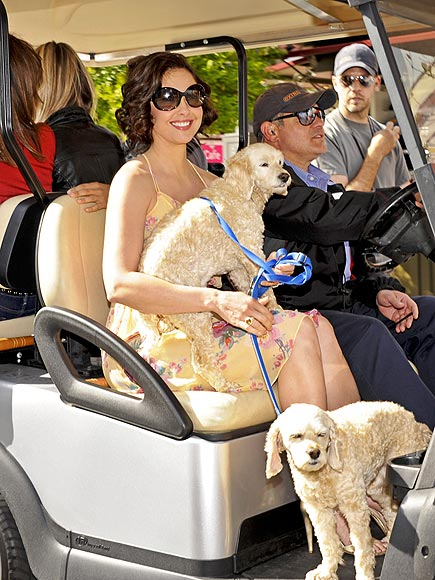 Stars and Their Pets: Ashley Judd's Ruff Riders