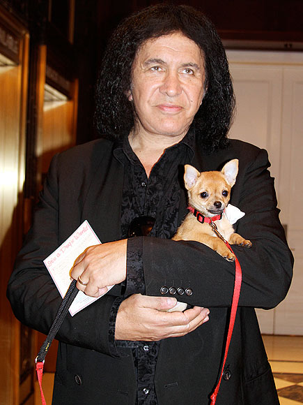 GENE SIMMONS photo | Gene Simmons