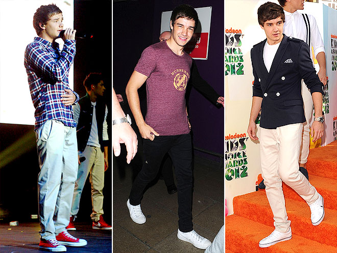 THE STYLE CHAMELEON