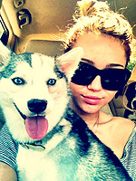 Miley&#39;s Year of the Dog