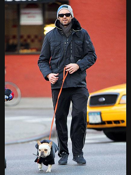 DOGGY RUN  photo | Hugh Jackman