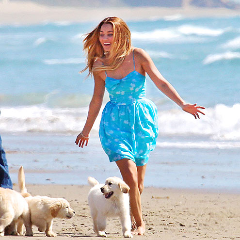 DOG RUN photo | Lauren Conrad