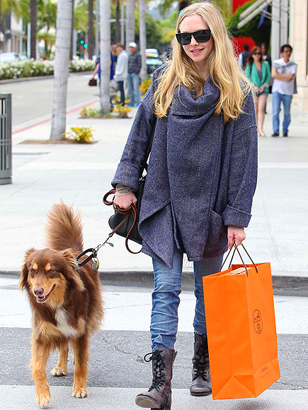 DOGGY, BAG photo | Amanda Seyfried
