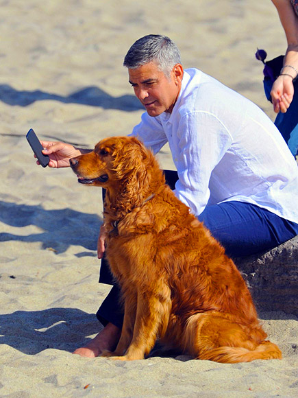 DOG DAY AFTERNOON photo | George Clooney