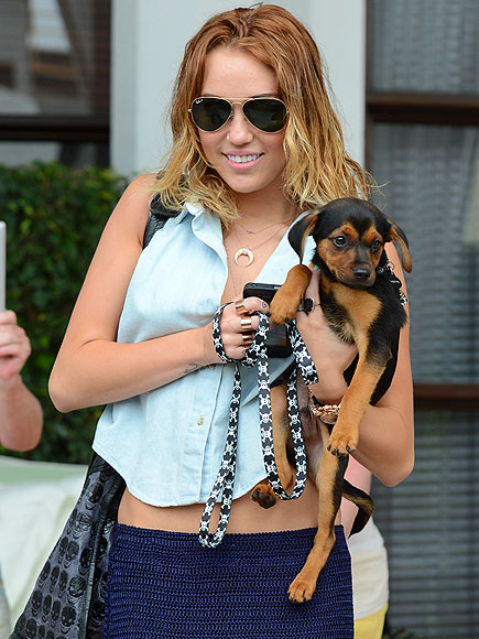 DOGGIE DUET