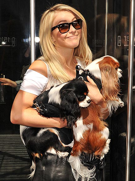 DOG RUN