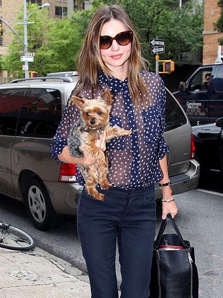 DOG STAR  photo | Miranda Kerr