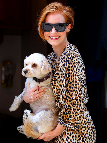ANIMAL INSTINCT photo | Jessica Chastain