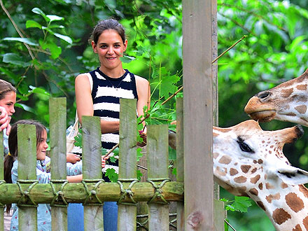 Katie Holmes & Suri Photographed at Bronx Zoo