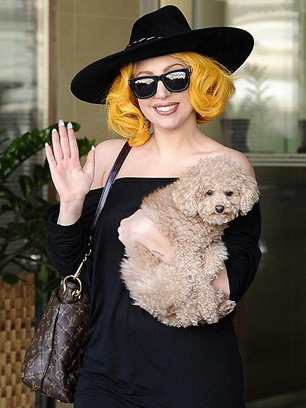 COLORFUL ARRIVAL photo | Lady Gaga